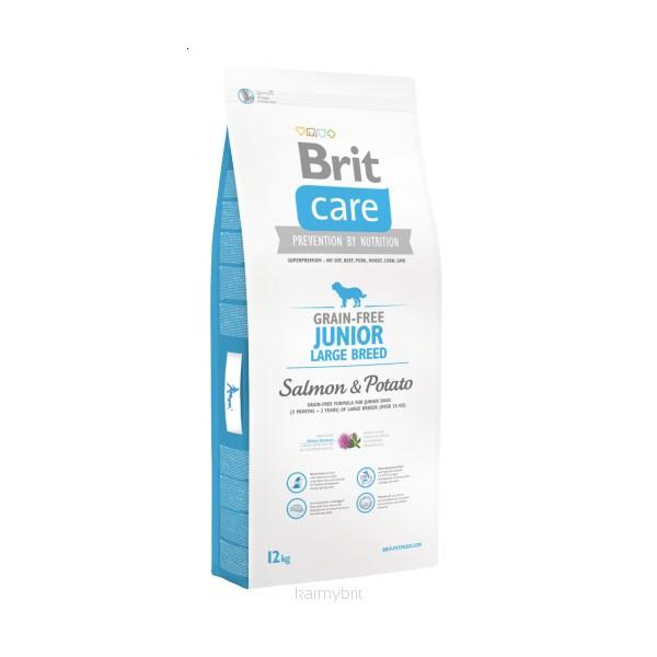 Sausas maistas šunims BRIT CARE Junior LB Salmon&Potato, 3 kg