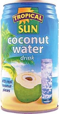 Kokosų vanduo su kokosų gabaliukais TROPICAL SUN, 330ml