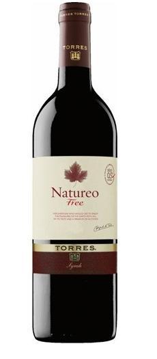NEALKOHOLINIS vynas, Torres Natureo Syrah, 750 ml