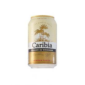 Alus Caribia Ginger 0.0% ERDINGER, 0.33L
