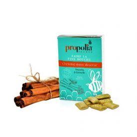 Kramtomoji guma be cukraus PROPOLIA su cinamonu ir bičių pikiu, 24 g