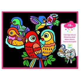 Velvetu dekoruota spalvinimo juosta DJECO Baby Birds (DJ09099)