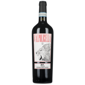 Ekologiškas raudonas vynas DOMINI DEL LEONE Valpolicella Ripasso DOC 2016 14% 750ml