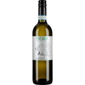 Ekologiškas baltas vynas DOMINI DEL LEONE Pinot Grigio DOC 2019 12,5% 750ml