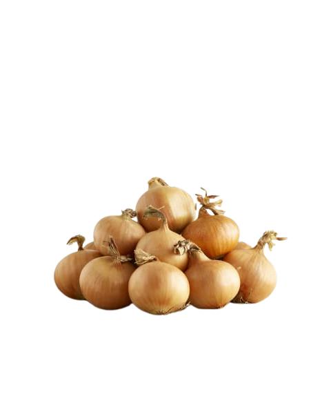 Ekologiški švieži svogūnai, Ūkininkas R. Gedrikas, 1kg