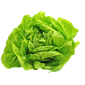 Ekologiškos salotos NATURALIA ŪKIS, 1 vnt