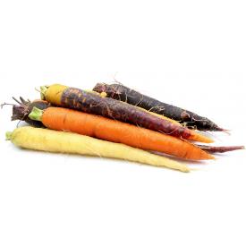 Ekologiškos vaivorykštinės morkos FRESHWISE, 1kg