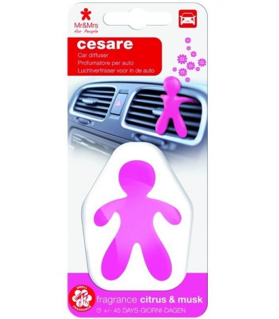Automobilių oro gaiviklis CESARE plastikinėje pakuotėje – CITRUS & MUSK, Mr&Mrs Fragrance
