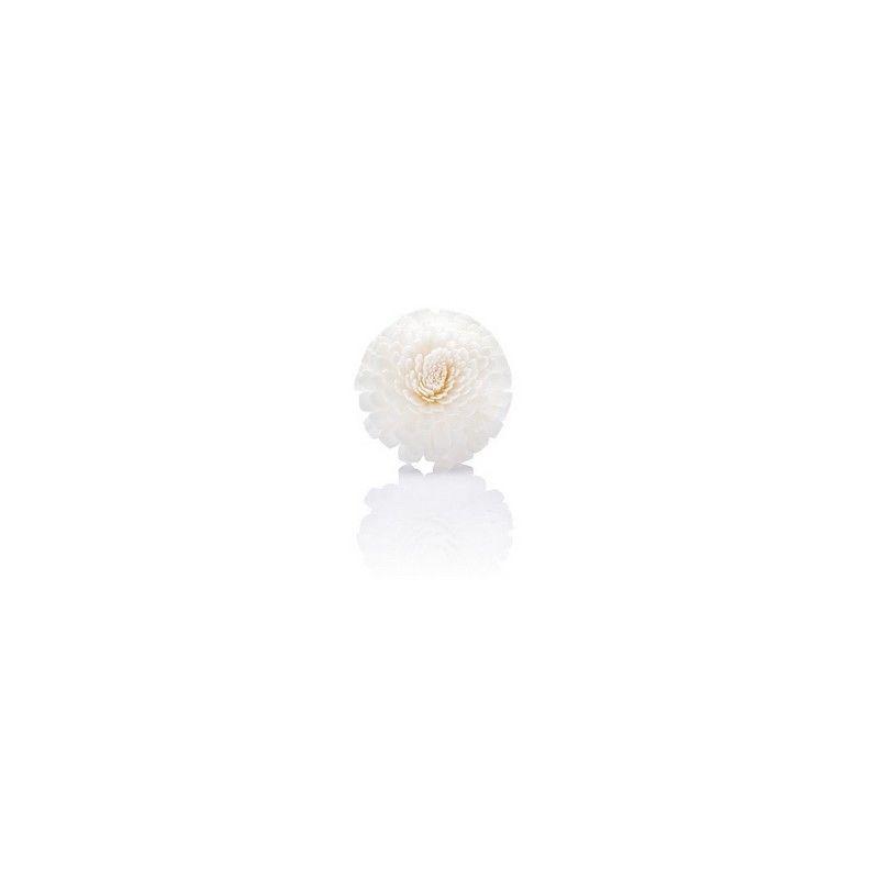 Kvapų difuzorių lazdelės VOGEL FREI su zinnia gėlėmis, natūralios 5×25 cm