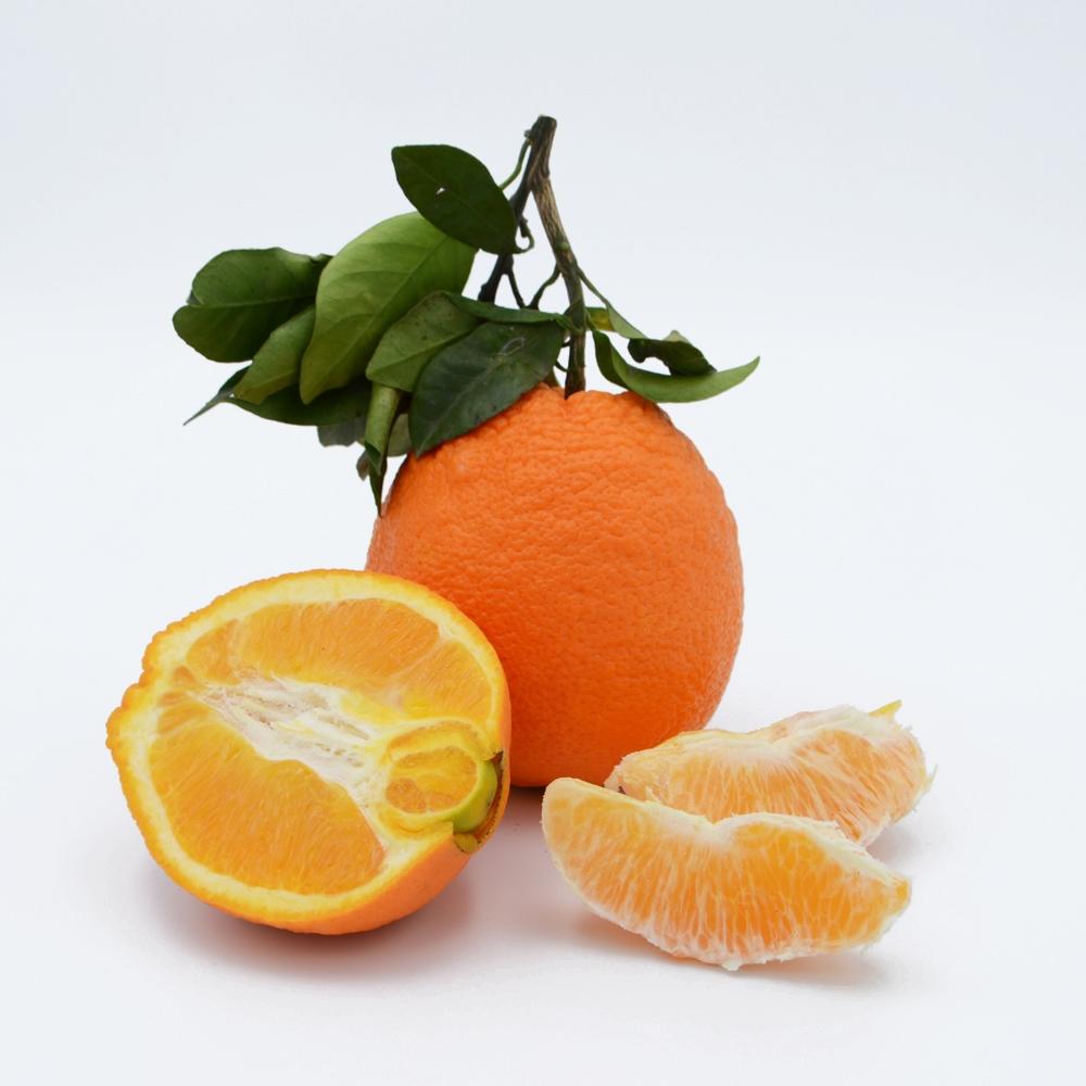 Apelsinai Tarocco 6/4, 2 klasė (Sicilija)