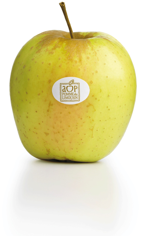 Obuoliai Pomme du Limousin AOP