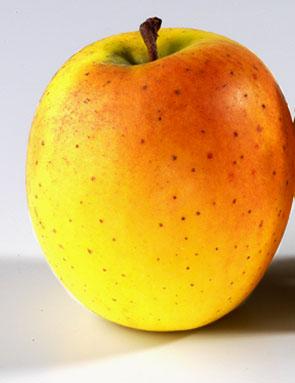 Obuoliai Delisdor