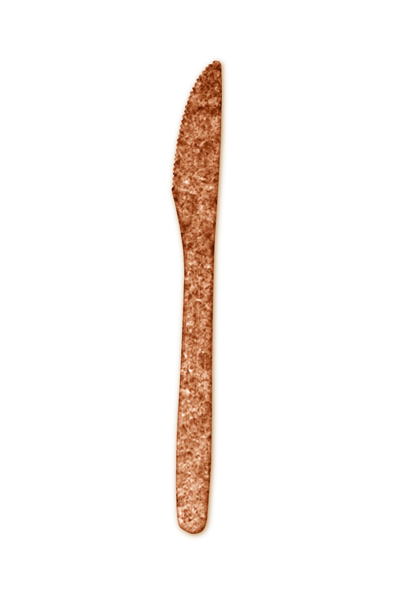 Augalinės sudėties vienkartinis peilis, 10 vnt. BIOTREM