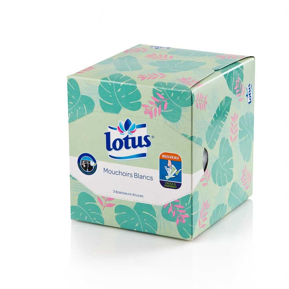 Vienkartinės nosinaitės dežutėje LOTUS (3 sluoksnių), 48 vnt.