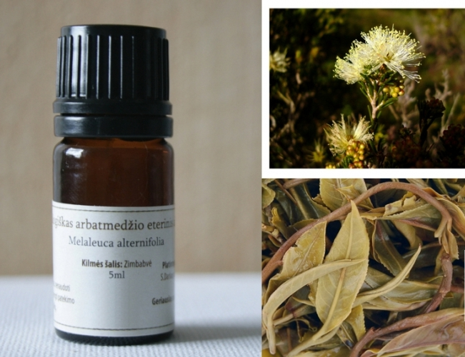 EKOLOGIŠKAS arbatmedžio eterinis aliejus NATUR BOUTIQUE, 5 ml