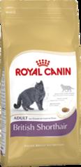 ROYAL CANIN  British Shorthair specialus maistas suaugusioms britų trumpaplaukių veislės katėms nuo 1 metų amžiau, 2kg